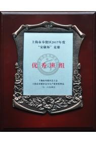 """上海市奉贤区2017年度""""安康杯""""竞赛优秀班组"""